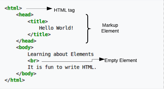 What is HTML? The Basics of HTML